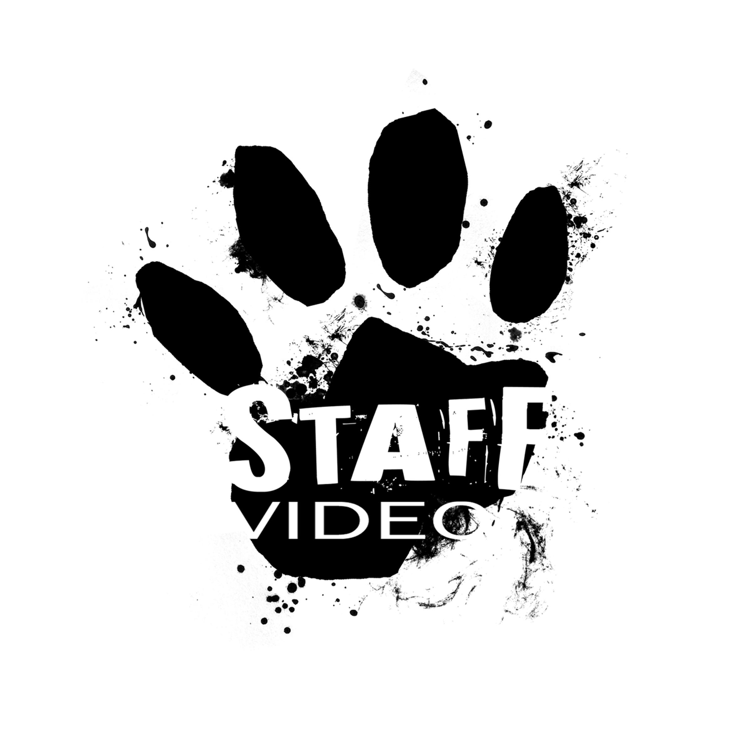 Agence de production audio visuelle Staff Vidéo